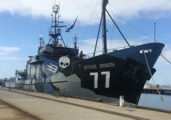 MV Steve Erwin